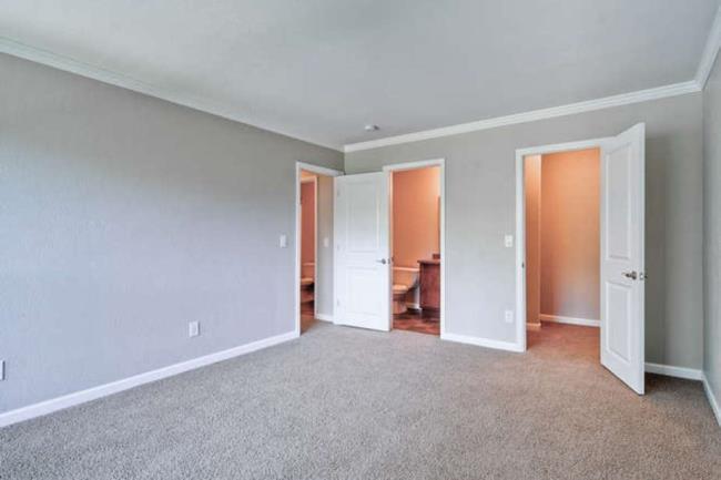 Apartments For Rent In Gunbarrel Colorado