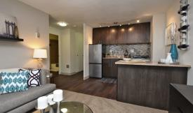 Denver Downtown Central Rentals Homes Apartments And Houses For